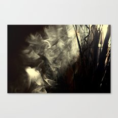 Sunlight, shadows and smoke. Canvas Print