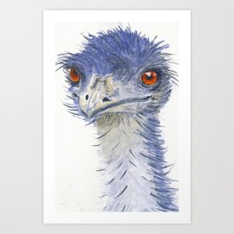 emu watercolour Art Print
