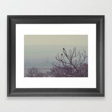 DSC_0536 Framed Art Print