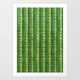 Cactus Mania Texture Art Print