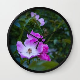 Summer pink wild flowers Wall Clock