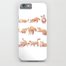 Funny Cat Personalities for Cat Lovers, Cat Mamas and Cat Dads iPhone Case