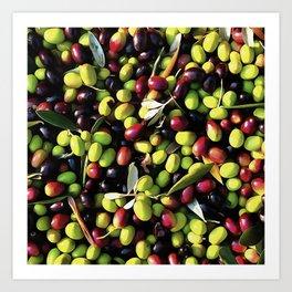 Organic Olives Art Print