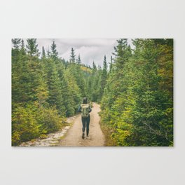 Hiking trail woman in the woods Canvas Print