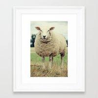sheep Framed Art Prints featuring Sheep by Falko Follert Art-FF77