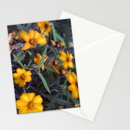 Small Orange Flowers Stationery Cards