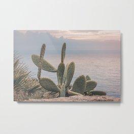 Sunset With Cactus Atlantic Ocean View Metal Print