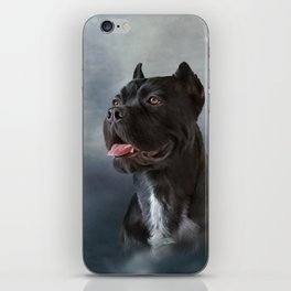 Drawing oil painting dog breed Cane Corso iPhone Skin