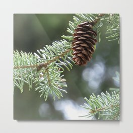 spruce cone 01 - brilliant green bokeh background nature photo Metal Print