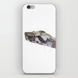Red Tail Boa iPhone Skin