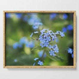 Jack Frost Flower - Siberian Bugloss - Brunnera Macrophylla Serving Tray