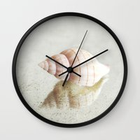 seashell Wall Clocks featuring seashell  by Sylvia Cook Photography
