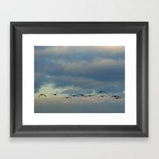 Flying Silhouettes Framed Art Print