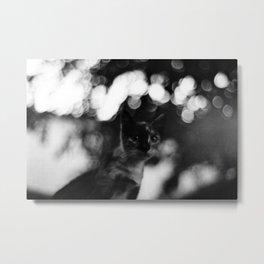 blurry cat Metal Print