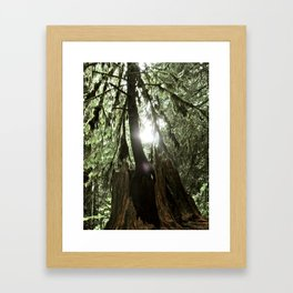 A Light Peers Through the Darkness Framed Art Print