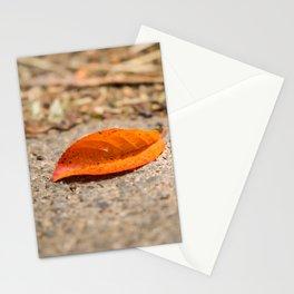 Orange leaf lying on the street Stationery Cards