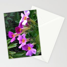 Taking Up the Mantle II Stationery Cards