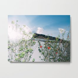 Moms backyard Metal Print