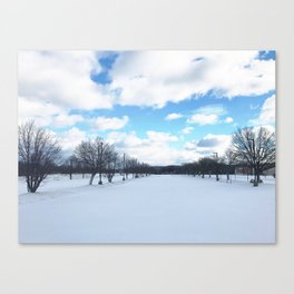 Snow in Pittsburgh Canvas Print