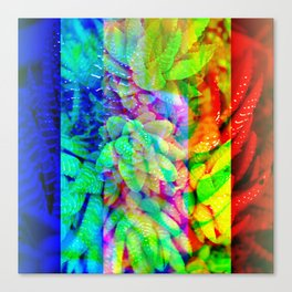 Around regaining influx spore tilts and to assort. Canvas Print