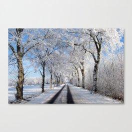 Winter-avenue Canvas Print
