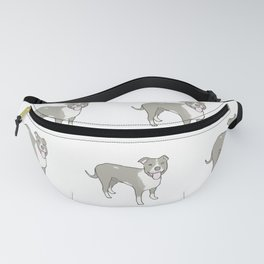 the buddy Fanny Pack