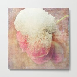 Vintage Roses - Vintage English Rose Metal Print