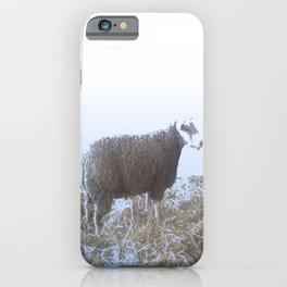 Solitude on straw iPhone Case