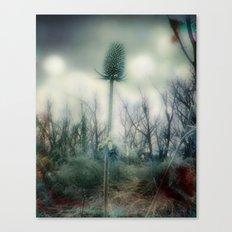 Ice Blue Meadow Canvas Print