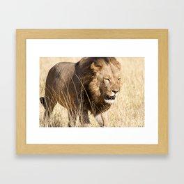 Looking for my Pride Framed Art Print