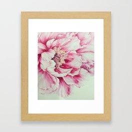 RED FLOWER - 060818/1 Framed Art Print