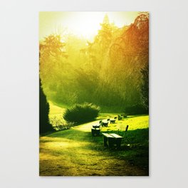 Chimera Canvas Print