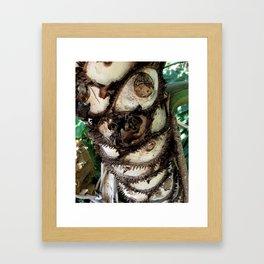 Prickly Palm Framed Art Print