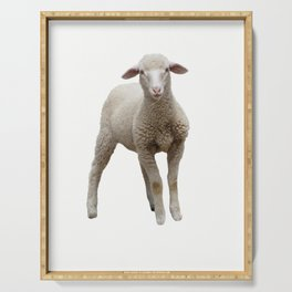 isolated lamb on white background Serving Tray