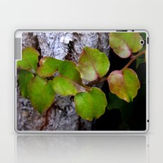 fall is coming -13- Laptop & iPad Skin