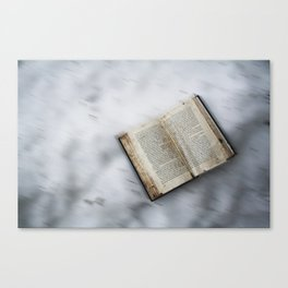 Book's little world 2 Canvas Print