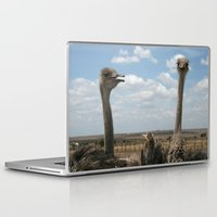ostrich Laptop & iPad Skins featuring Ostrich by wendygray
