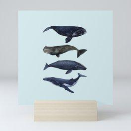 4 CETACEANS (light blue) Mini Art Print