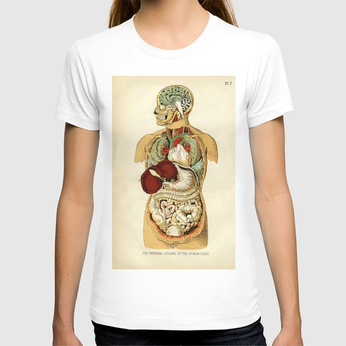 Internal Organs Of The Human Body T Shirt By Thomasterceira Society6
