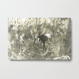 Wild Horse in the Woods Metal Print