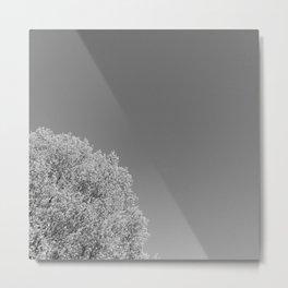 Duo II - Left Metal Print