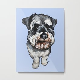 Barney the Miniature Schnauzer Metal Print