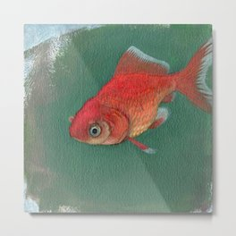 Goldfish #3 Metal Print