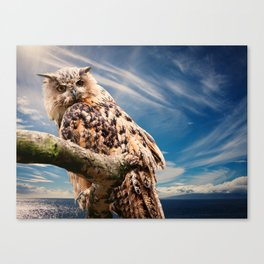 Woot Woot Canvas Print