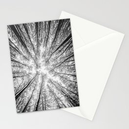 Naked trees #2 - Black and white Stationery Cards