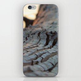 albero sapiente iPhone Skin