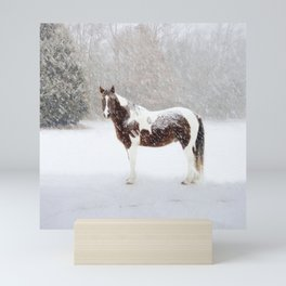 Pinto Horse In Snow Mini Art Print