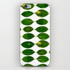 Still a Little Green iPhone Skin