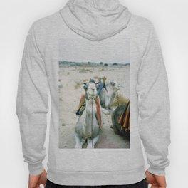 Camel 01 Hoody