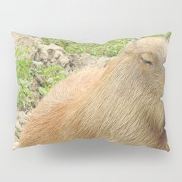 Capybara Pillow Sham